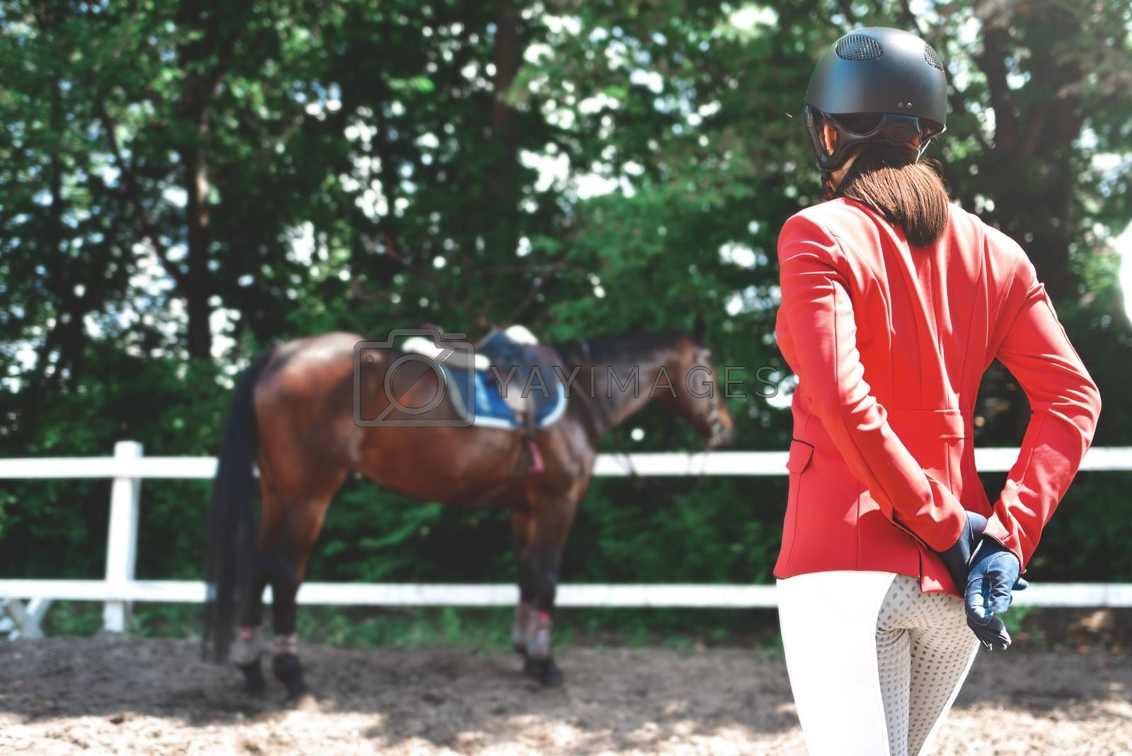 Girl rider adjusts saddle on her horse to take part in horse races