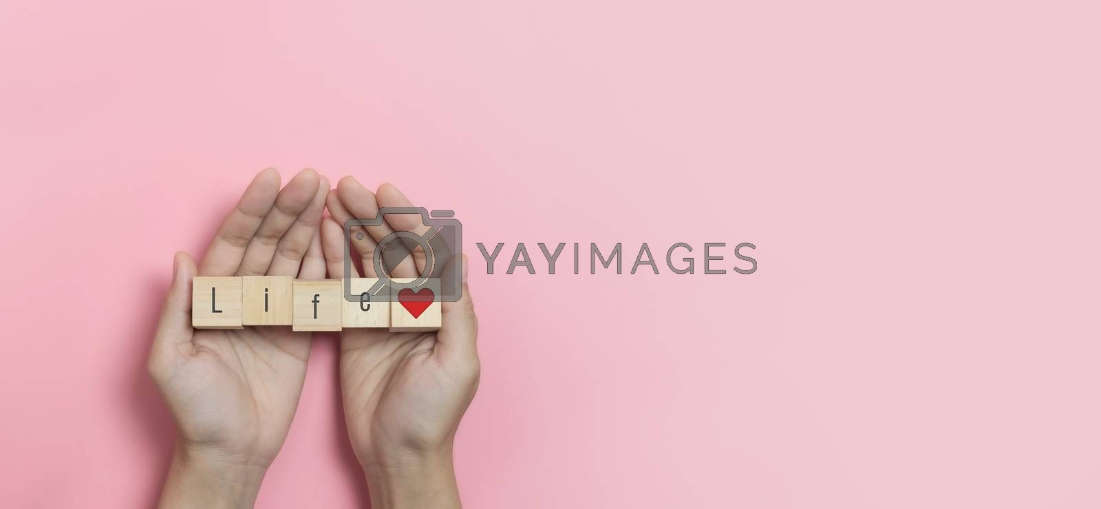 Hands holding Wood cubes with Life text and red heart on pink background. Banner, panorama, copy space.