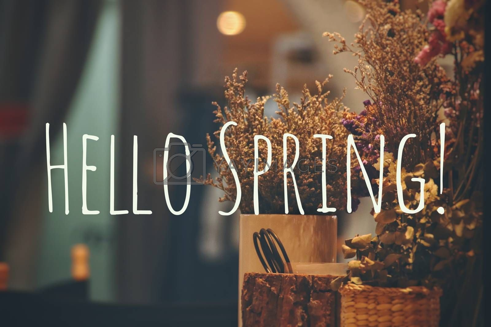 Hello Spring typography background to welcome the coming of Springtime season