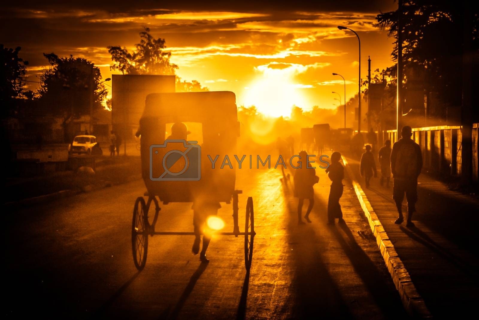 Pousse-pousse - malagasy form of transport in the cities at sunset