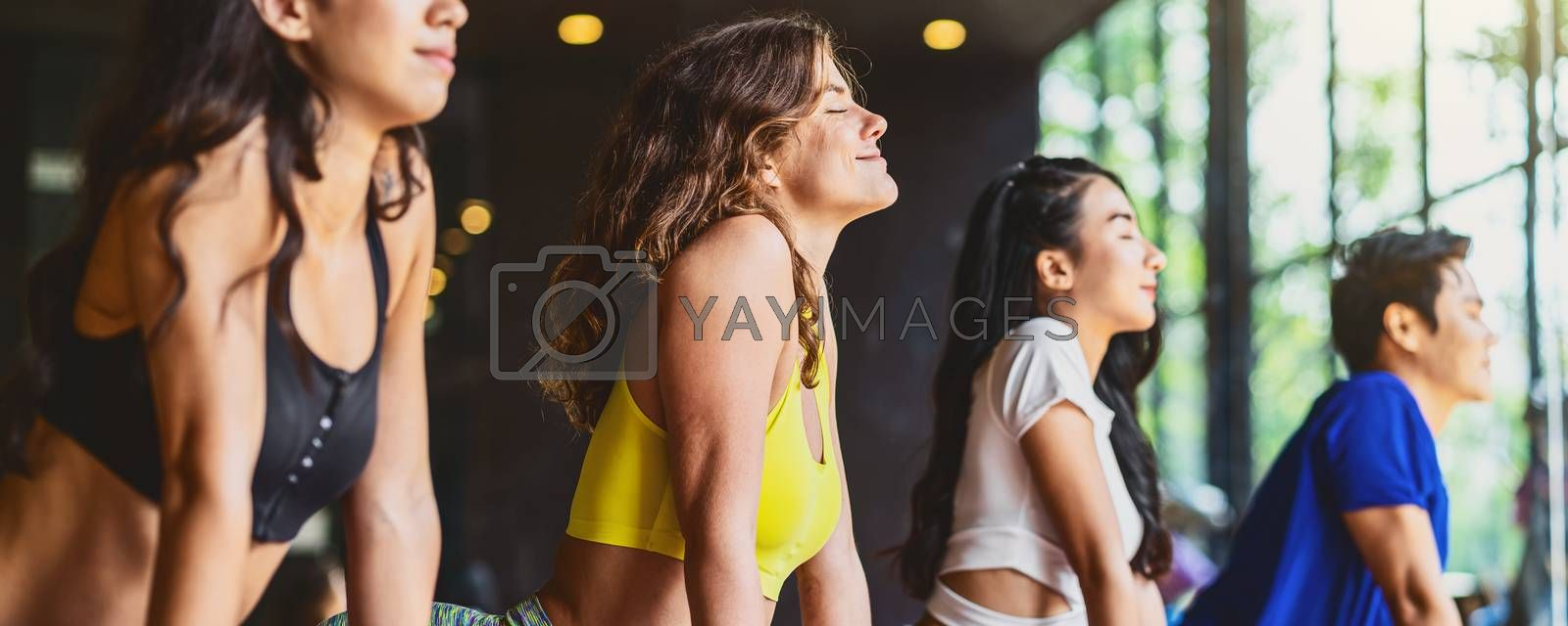 Banner, web page or cover template of Group of diversity practicing yoga class, healthy or Meditation Exercise,stretching in upward facing dog exercise, sports and healthcare concept