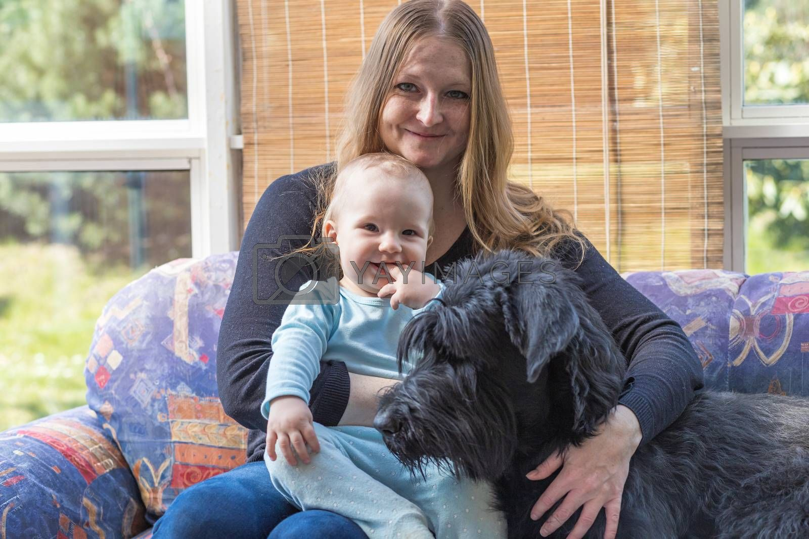 Young mother with her smiling baby boy and Big Black Schnauzer Dog together.