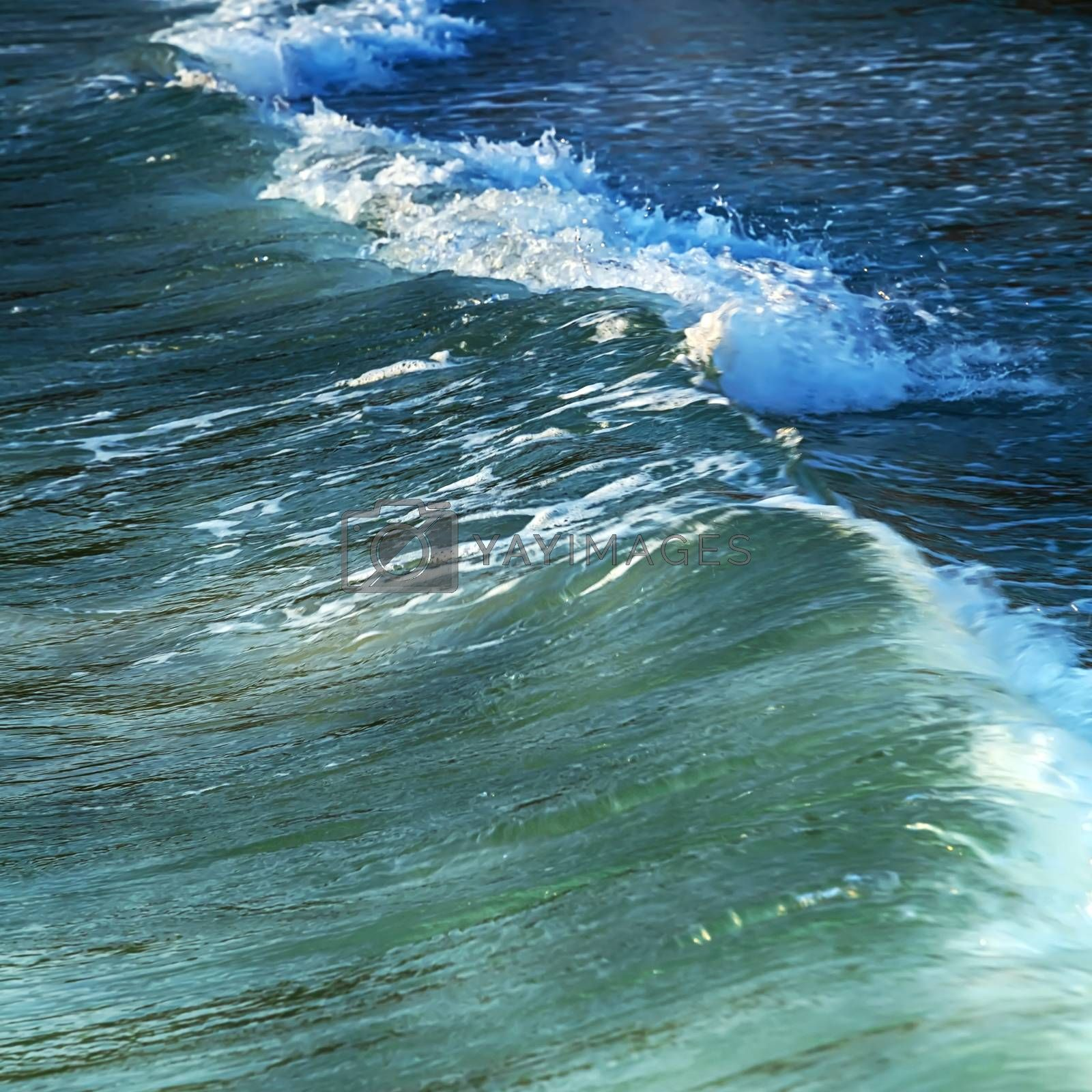 ocean water waves Summer background
