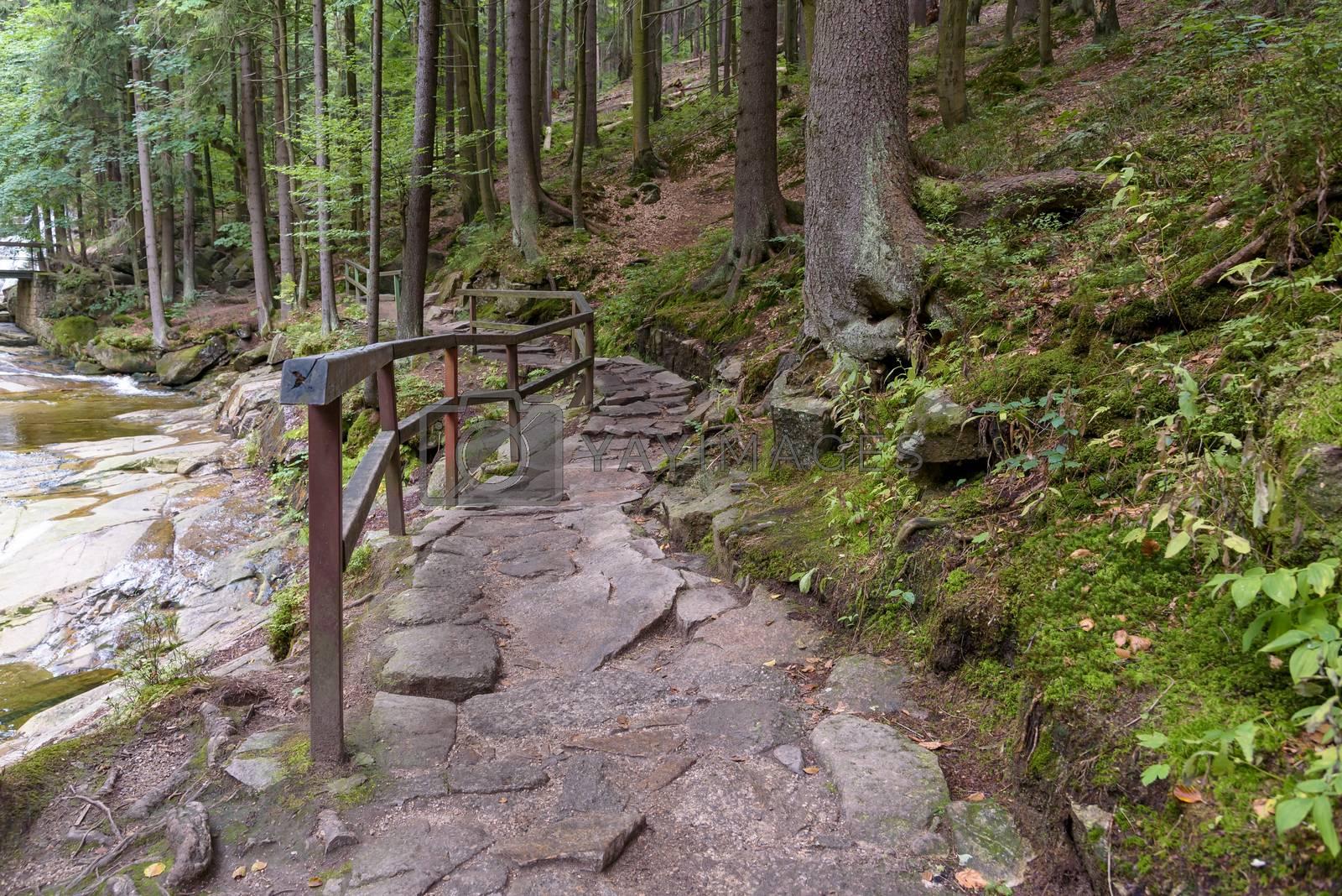Forest path to Mumlava Waterfalls near Harrachov in Giant Mountains in Czech Republic