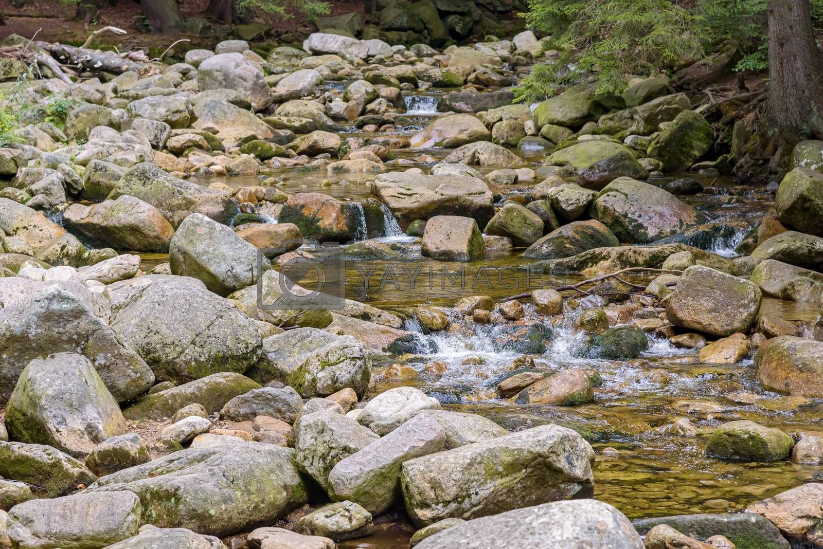 Royalty free image of View of the Mumlava river in Czech Republic by mkos83
