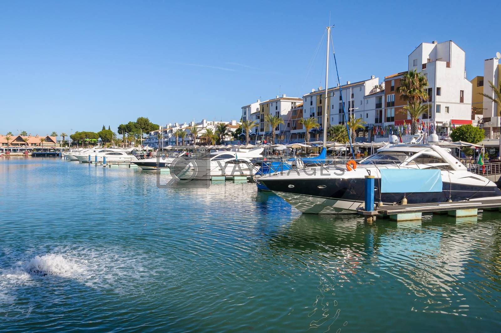 Royalty free image of Luxury yachts in the port of Vilamoura in Portugal by mkos83