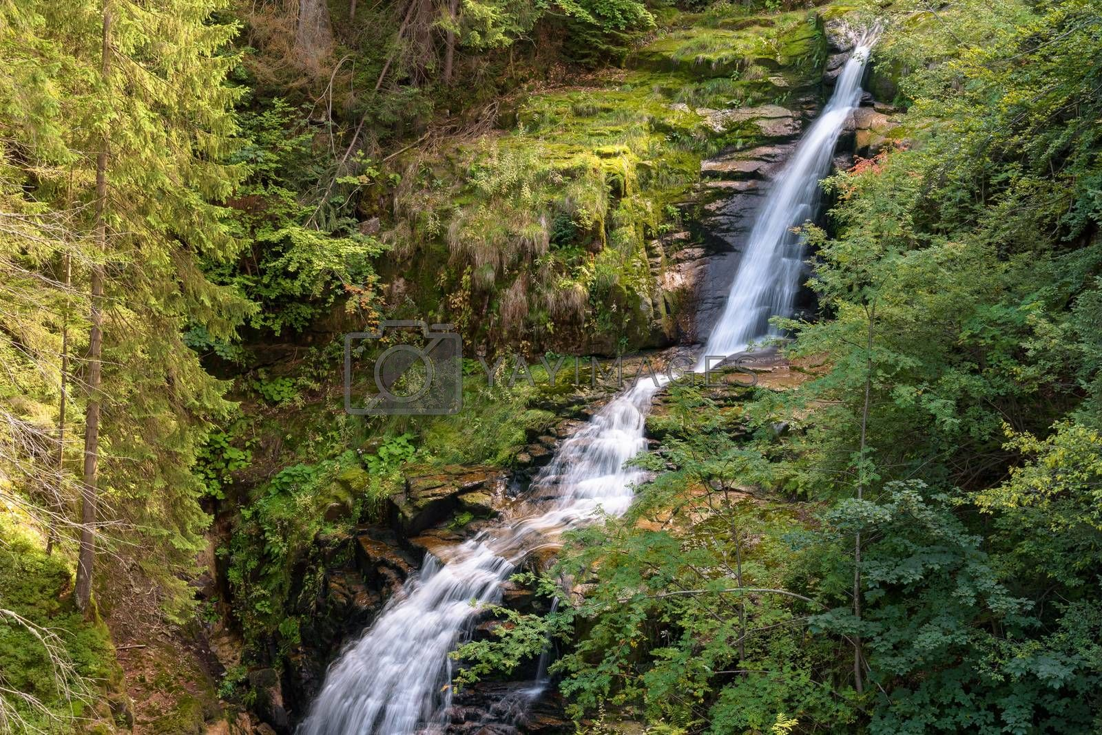 Blurred water of waterfall of Kamienczyk river - the highest waterfall in polish Giant Mountains