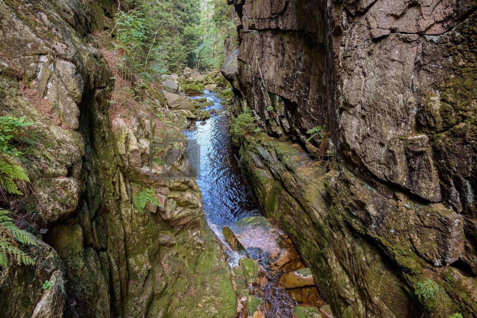 Gorge of Kamienczyk river in polish Giant Mountains