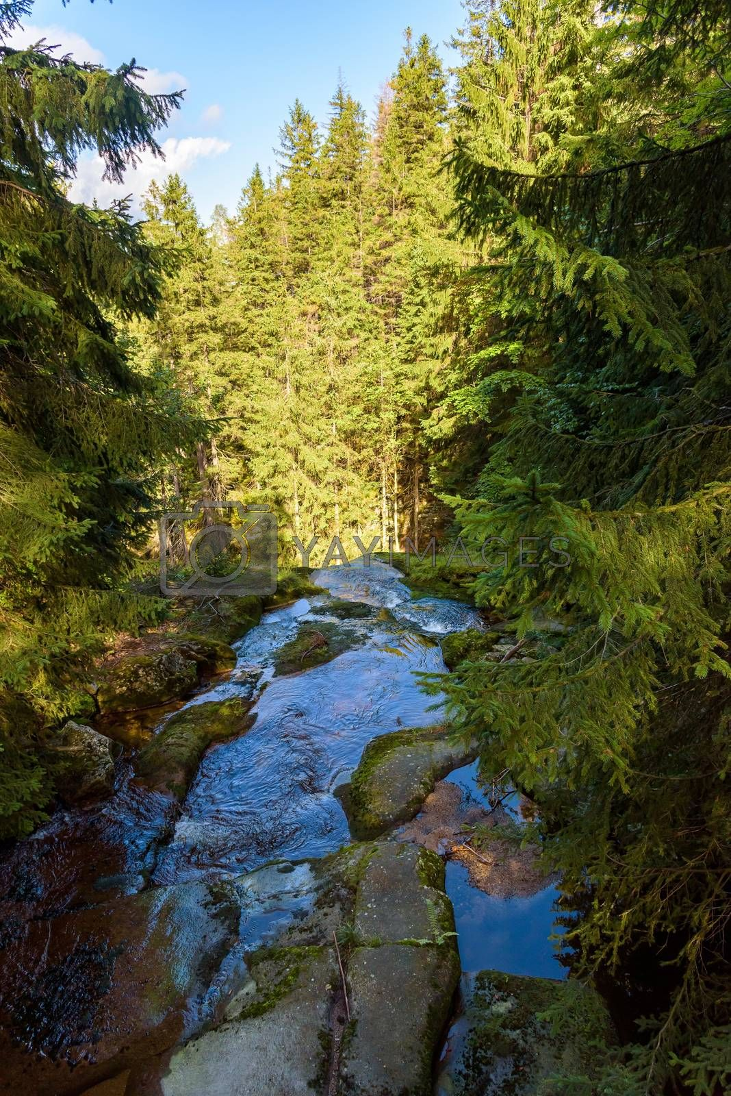 Waterfall edge on Kamienczyk river in Giant Mountains near Szklarska Poreba, Poland