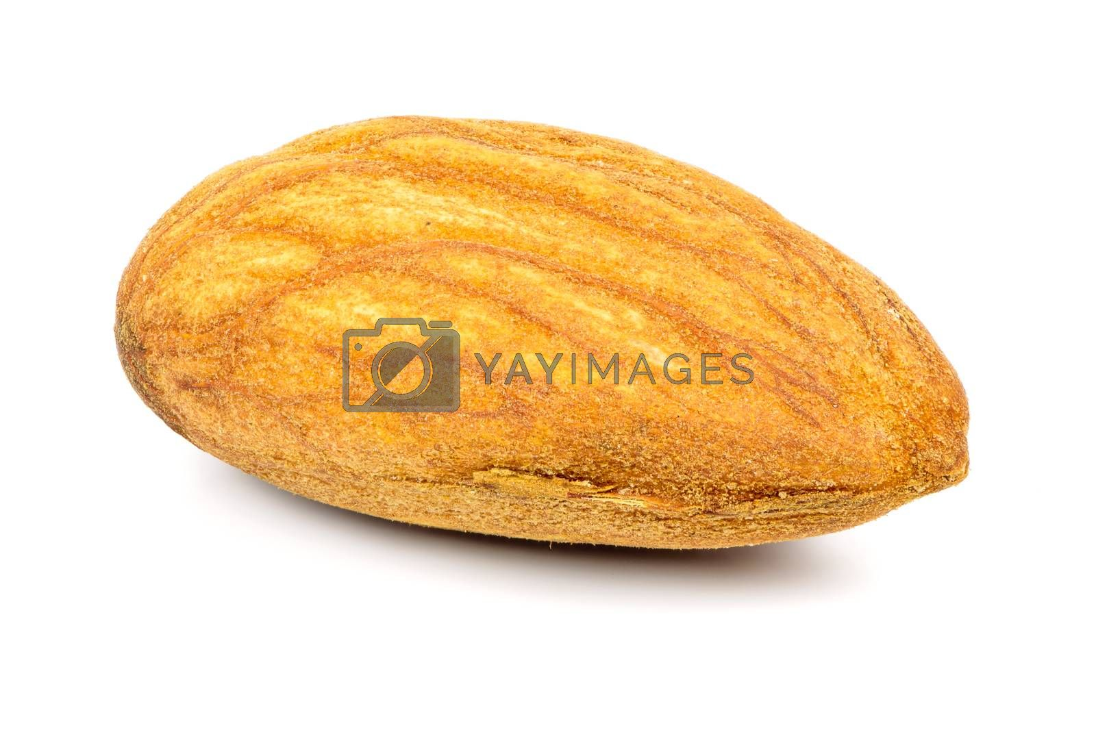 Royalty free image of Single almond nut on white background by mkos83