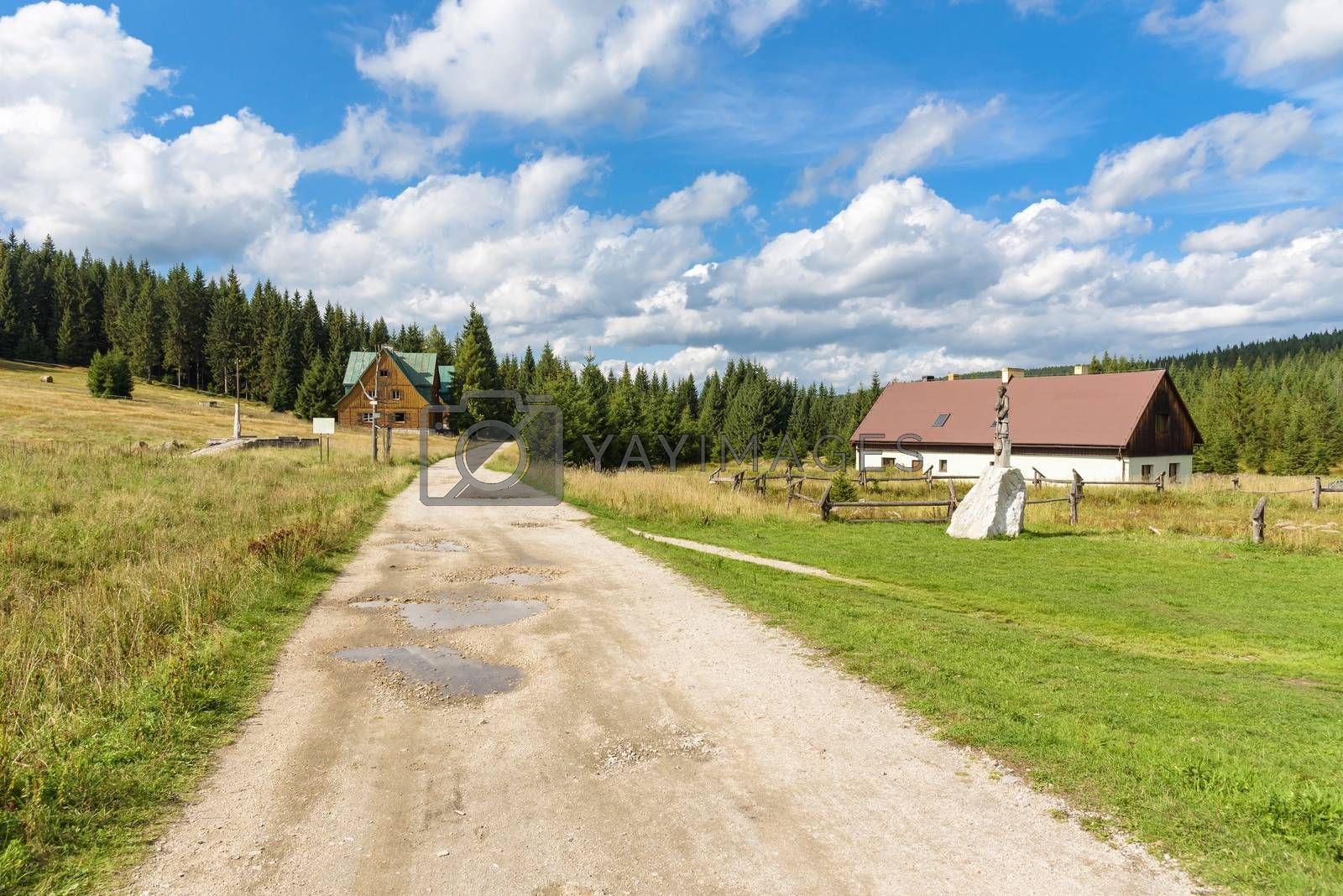 Royalty free image of Houses at the forest path in Jizera Mountains by mkos83