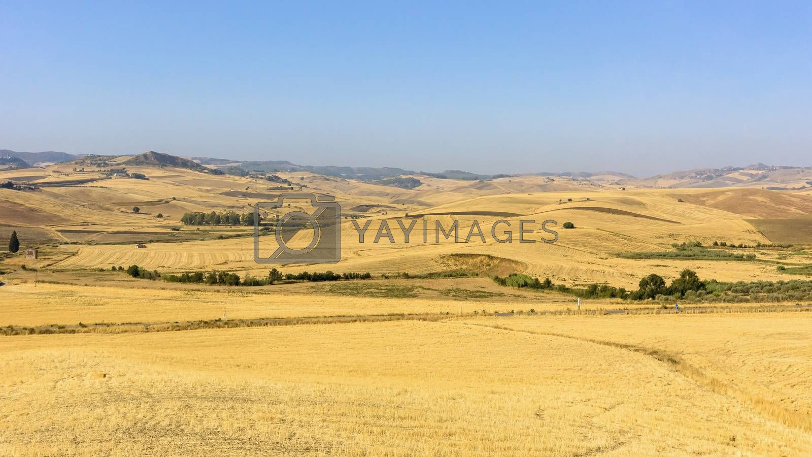 Royalty free image of Summer rural landscape of Sicily by mkos83