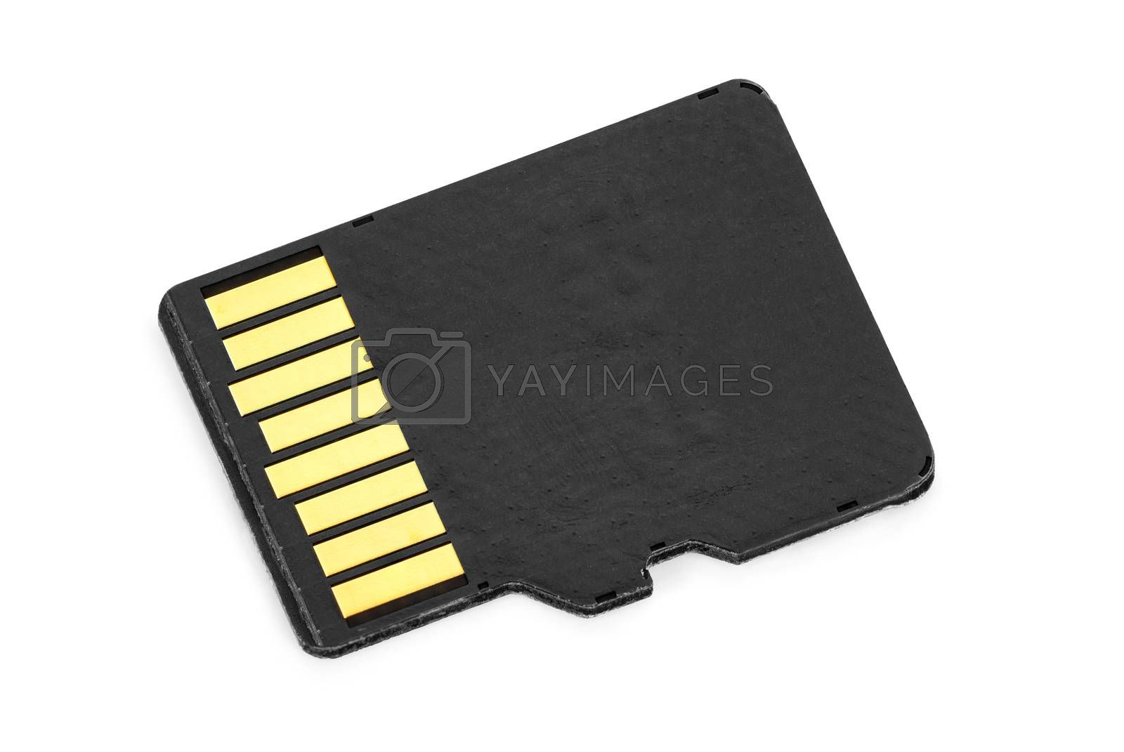 Royalty free image of Blank micro SD memory card on white background by mkos83