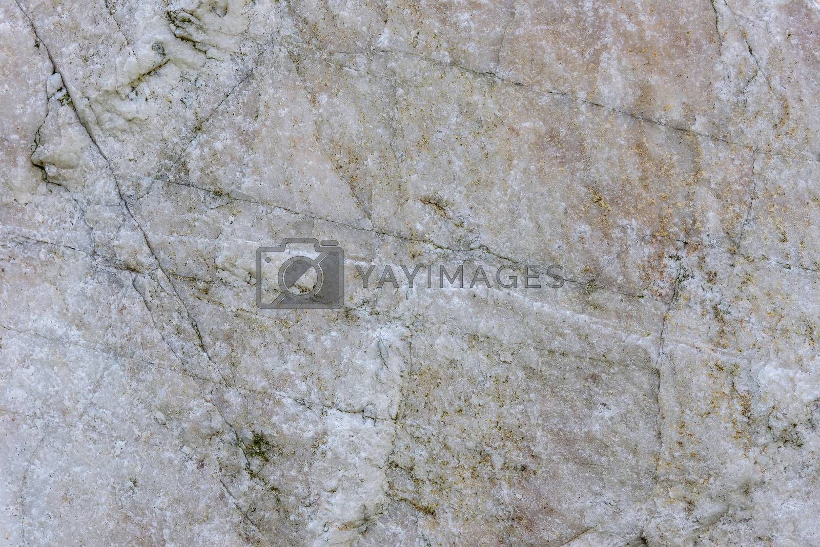 Royalty free image of Detailed stone texture or background by mkos83