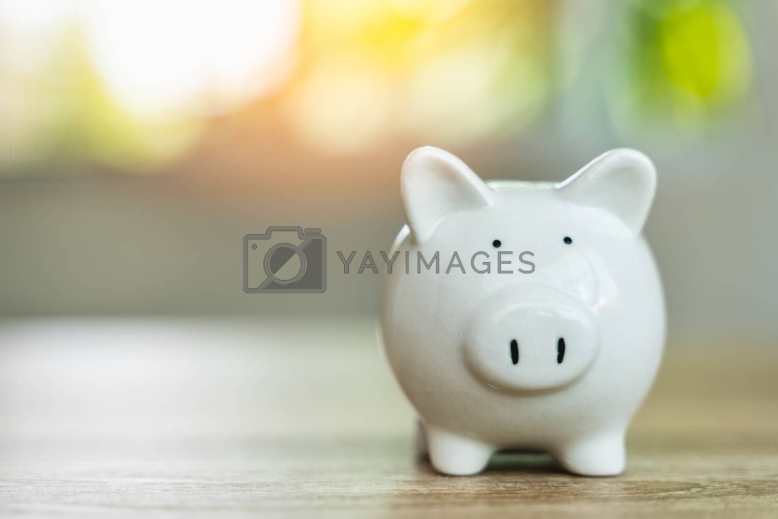 Money savings concepts Piggy bank symbol of saving money on wooden table with sunlight bokeh blur background and copy space