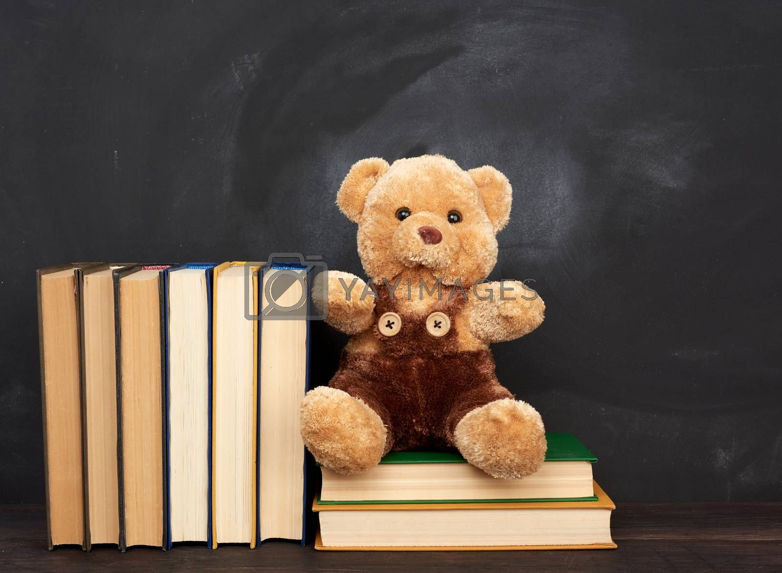 brown teddy bear sits on a brown wooden table, behind an empty black chalk board, back to school