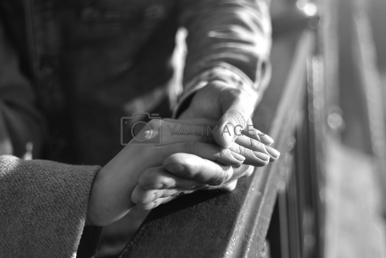 hand in hand, love, fingers black and white photo