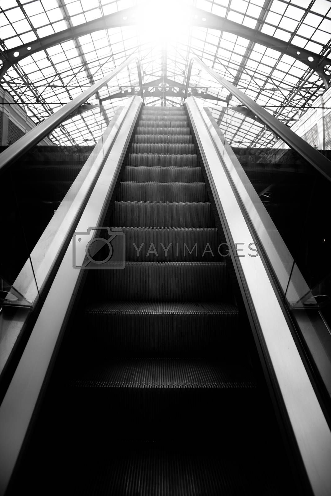 The path of the light, the path to success, escalator, lift up