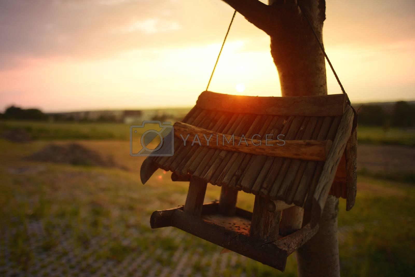 Beautiful Landscape, Birdhouse, summer, sunset warm temperature beautiful sky