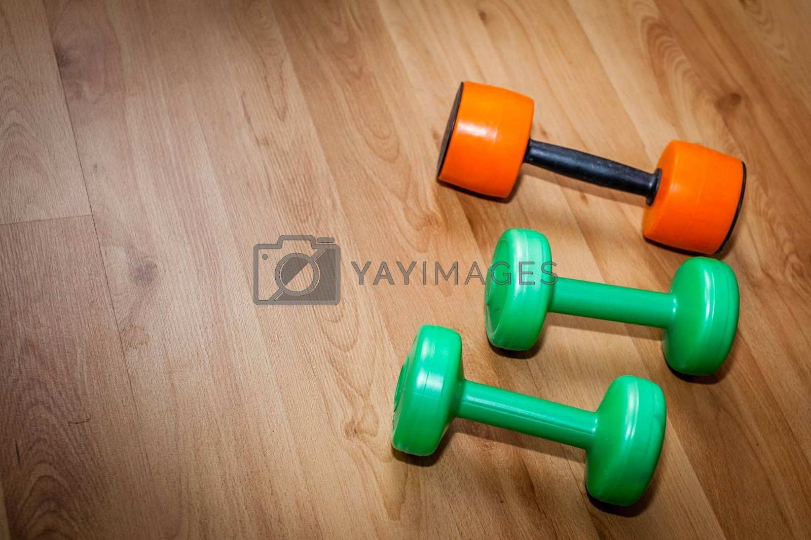 Exercise hand weights by pawopa3336