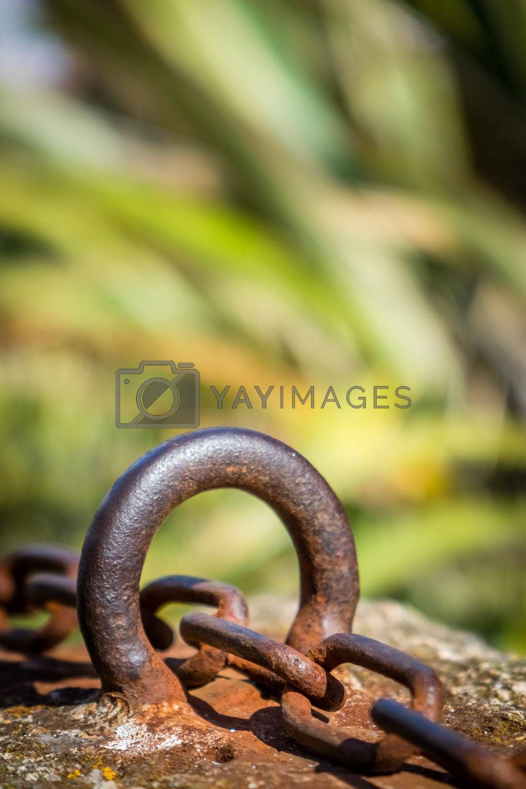 Old rusted chain attached to the stone wall in the port