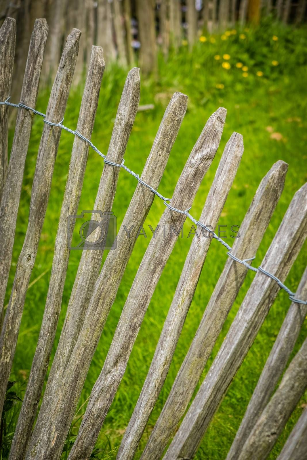 Close up of an old wooden fence