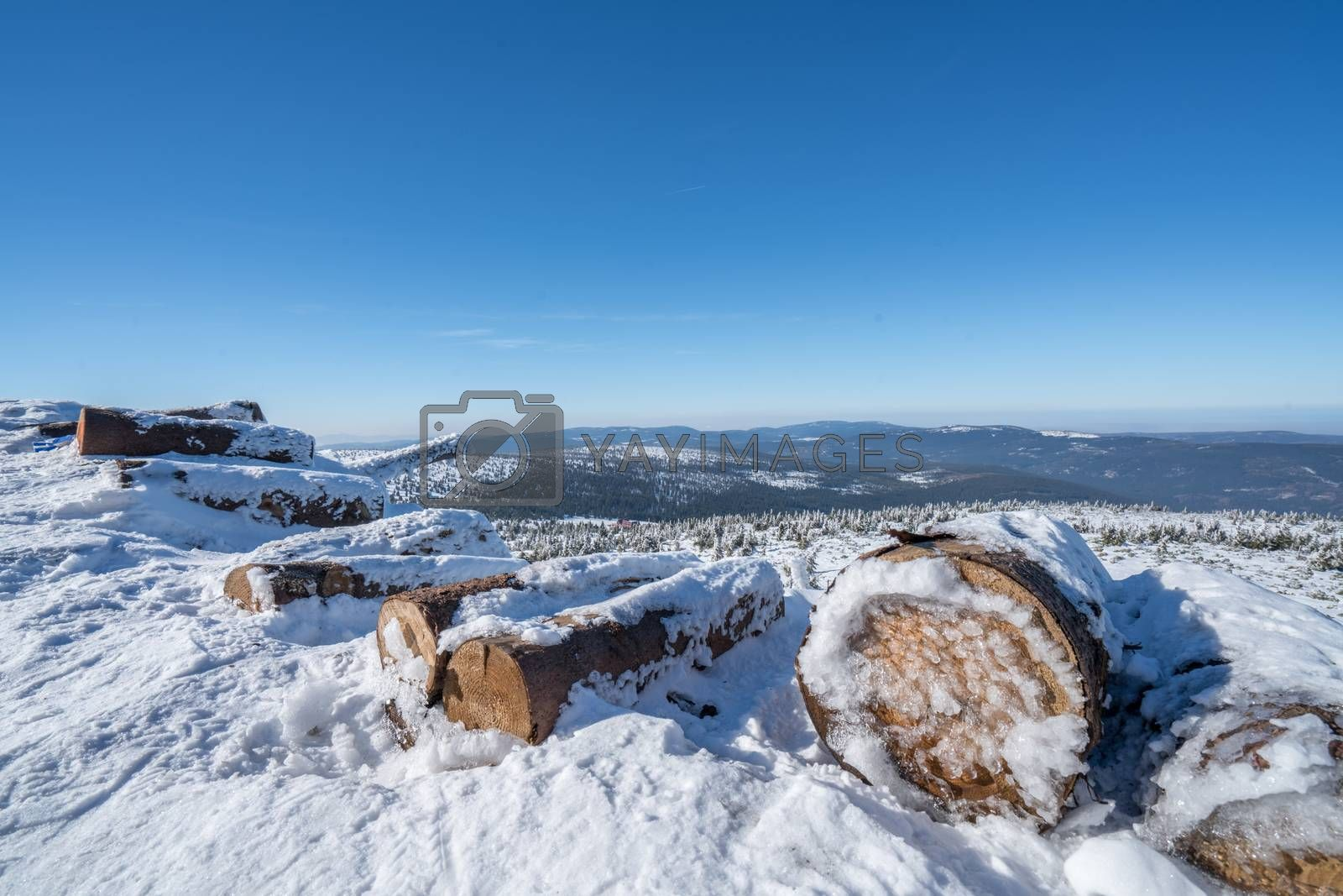 A pile of logs, cut and covered in snow and frost with a winter landscape of a Karkonosze mountains in the background, Poland