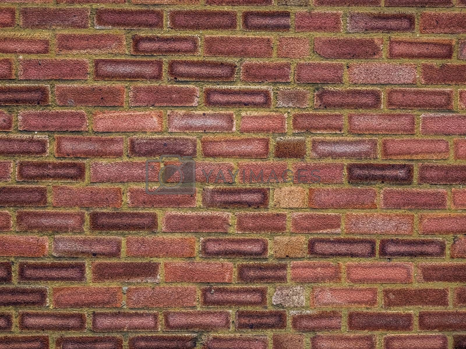 Red bricks wall pattern in a newly constructed building