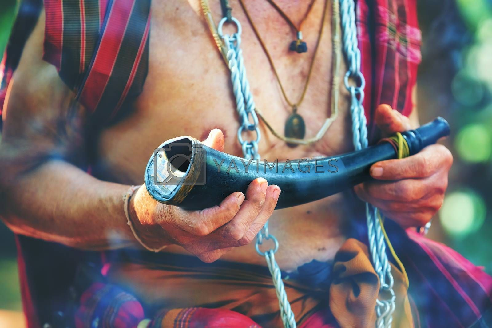 Senior mahout Hold a horn made with buffaloes for biting in the sacred art.