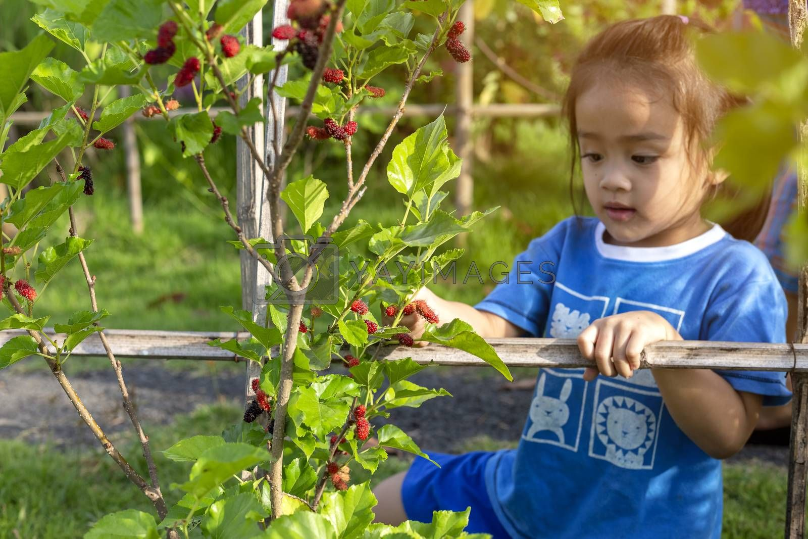 Cute little girl learning how to farm and garden