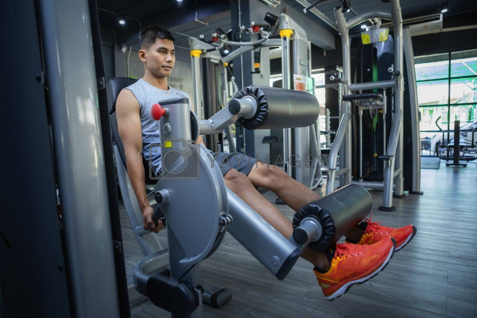 Young sporty man and woman training in modern gym. Gym exercise and workout concept