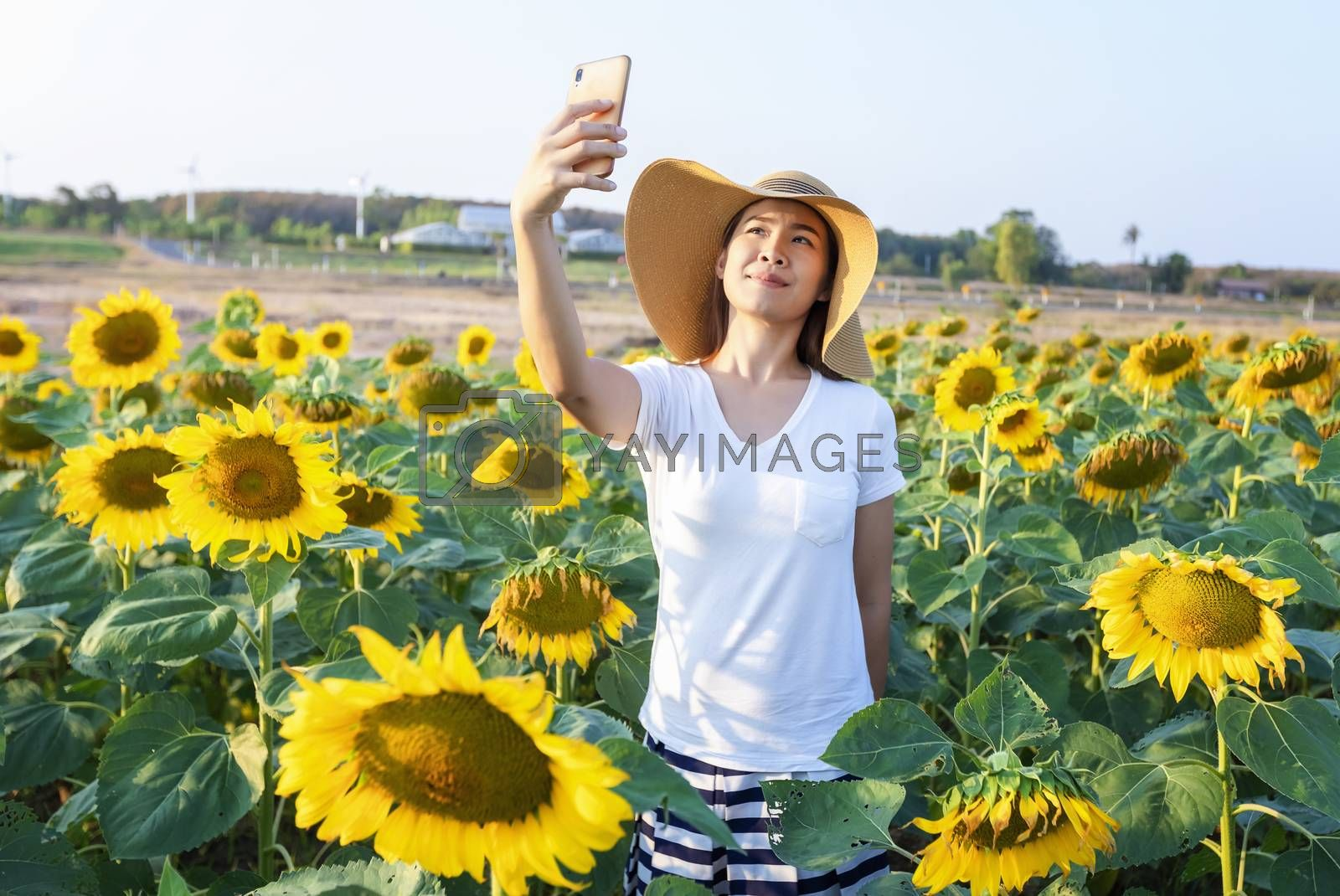 Beautiful woman in a beautiful blooming sunflower field. Happy woman summer sunset day