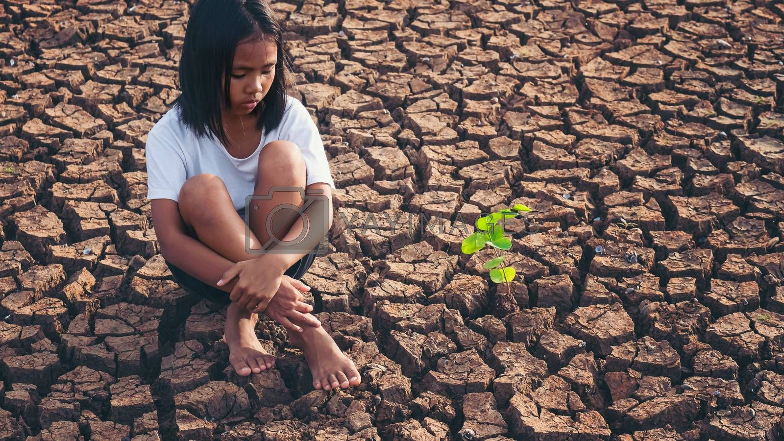 Sad girl  sitting on dry soil with small trees that grow beside him. Concept climate change, global warming, water crisis, World environment and pollution.