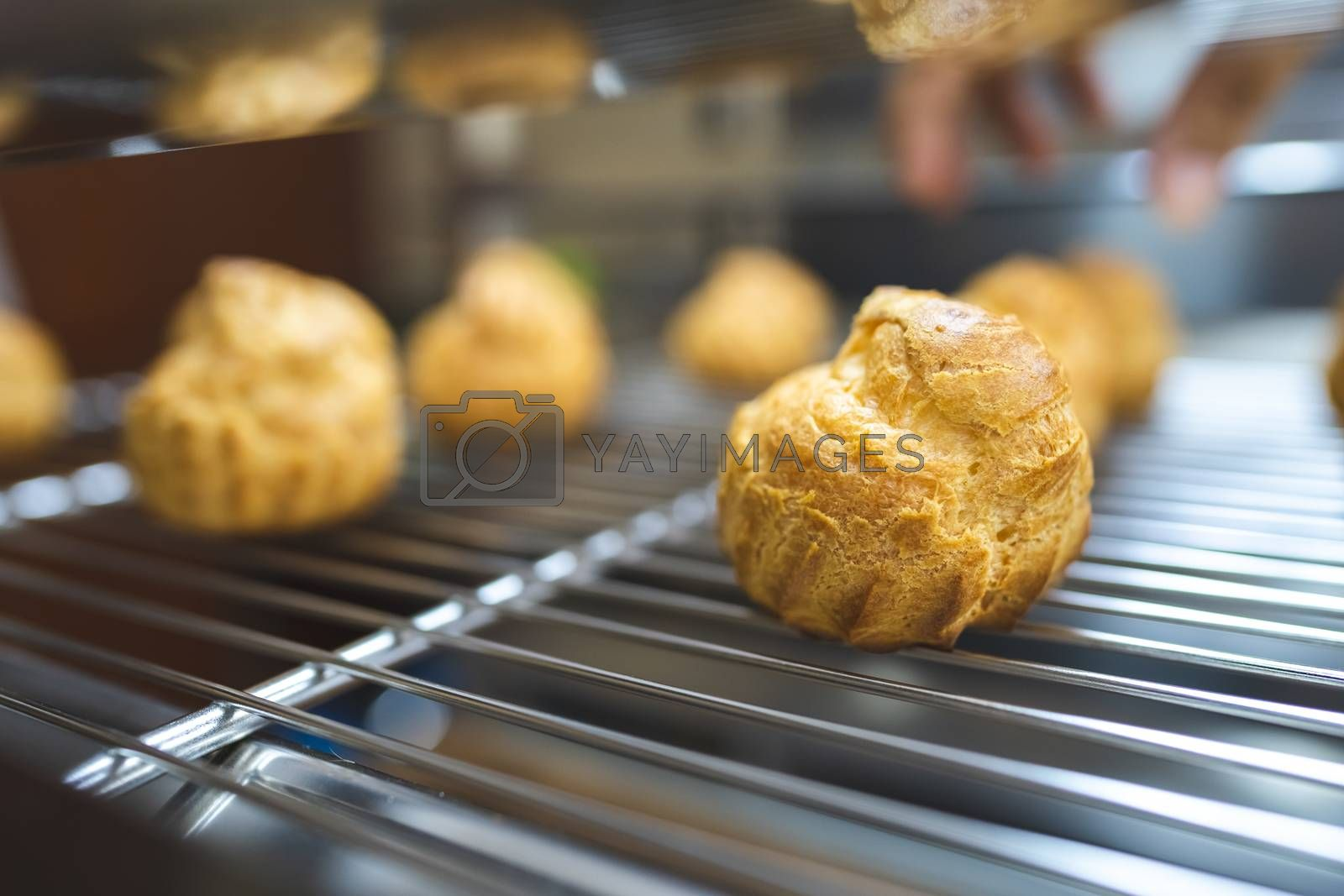 Close up choux baked home made  fresh crispy eclairs and profiteroles. Making desserts and sweets on an industrial scale, industry, background.Choux is a traditional french dessert.