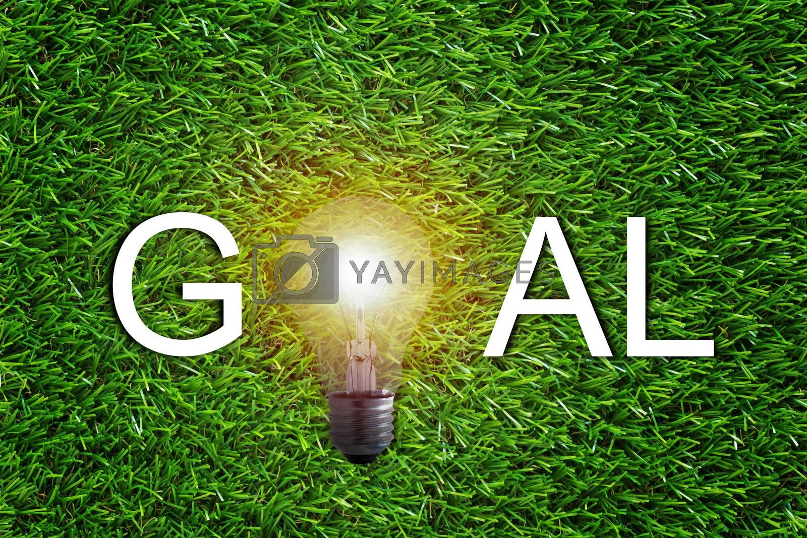 Business target and goal concept, marketing strategy and planning, light bulb on green grass background