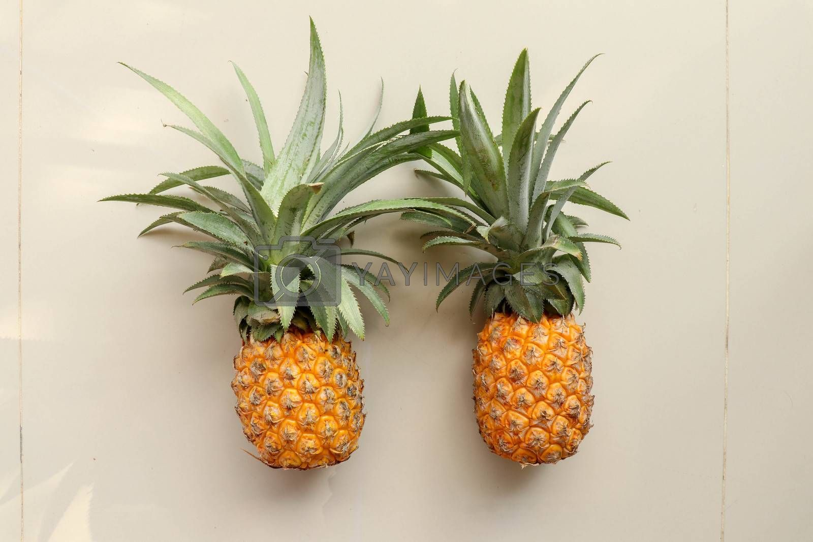 Couple whole pineapple tropical fruit or ananas isolated on white background. Whole ananas with leaves. Yellow orange ripe fresh pineapple. Two exotic tropical fruit. A full pineapple.