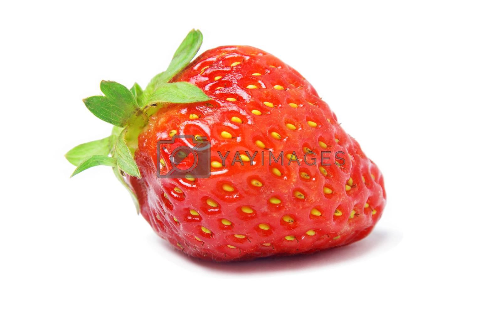 strawberry closeup on white background