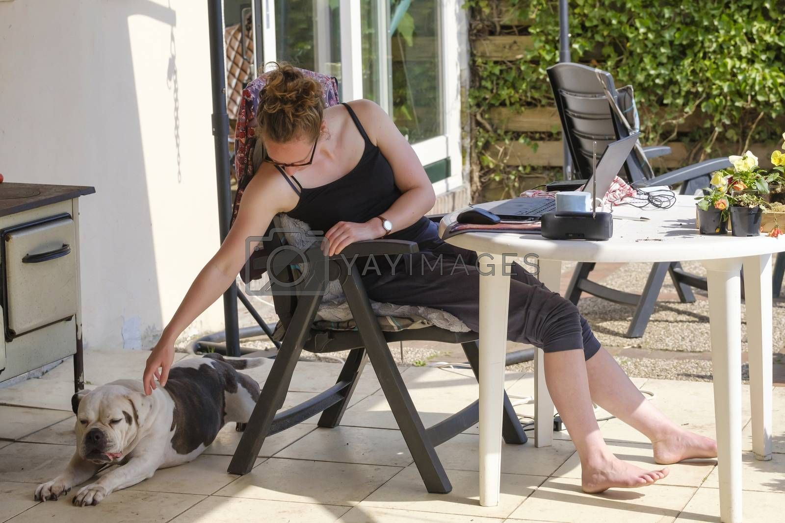 Derived from the work by an english bulldog, having fun at work. Working from home with laptop, smartphone and notebook in garden, during the lockdown, concept: Covid-19.