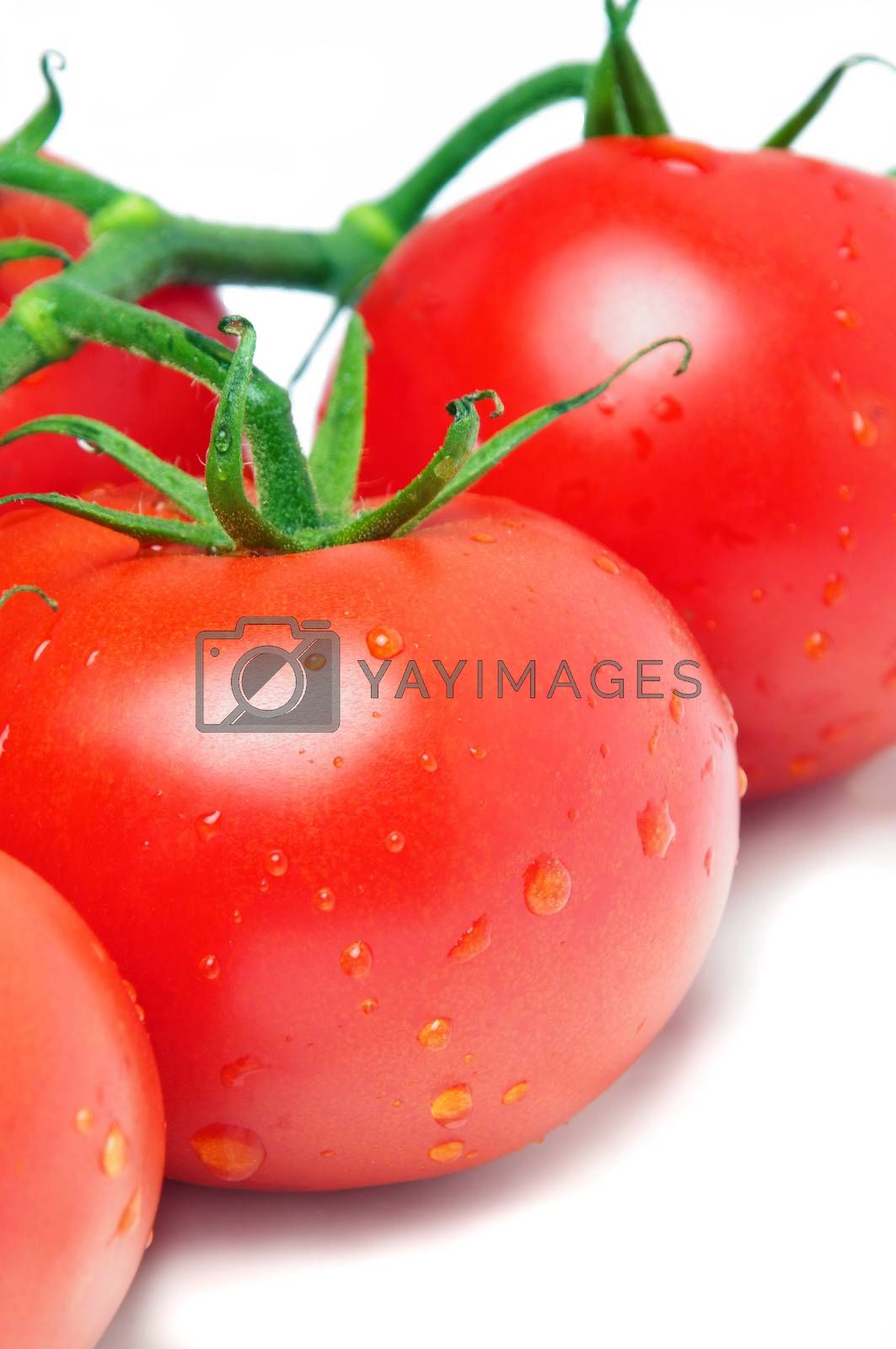 wet tomatoes closeup on plate