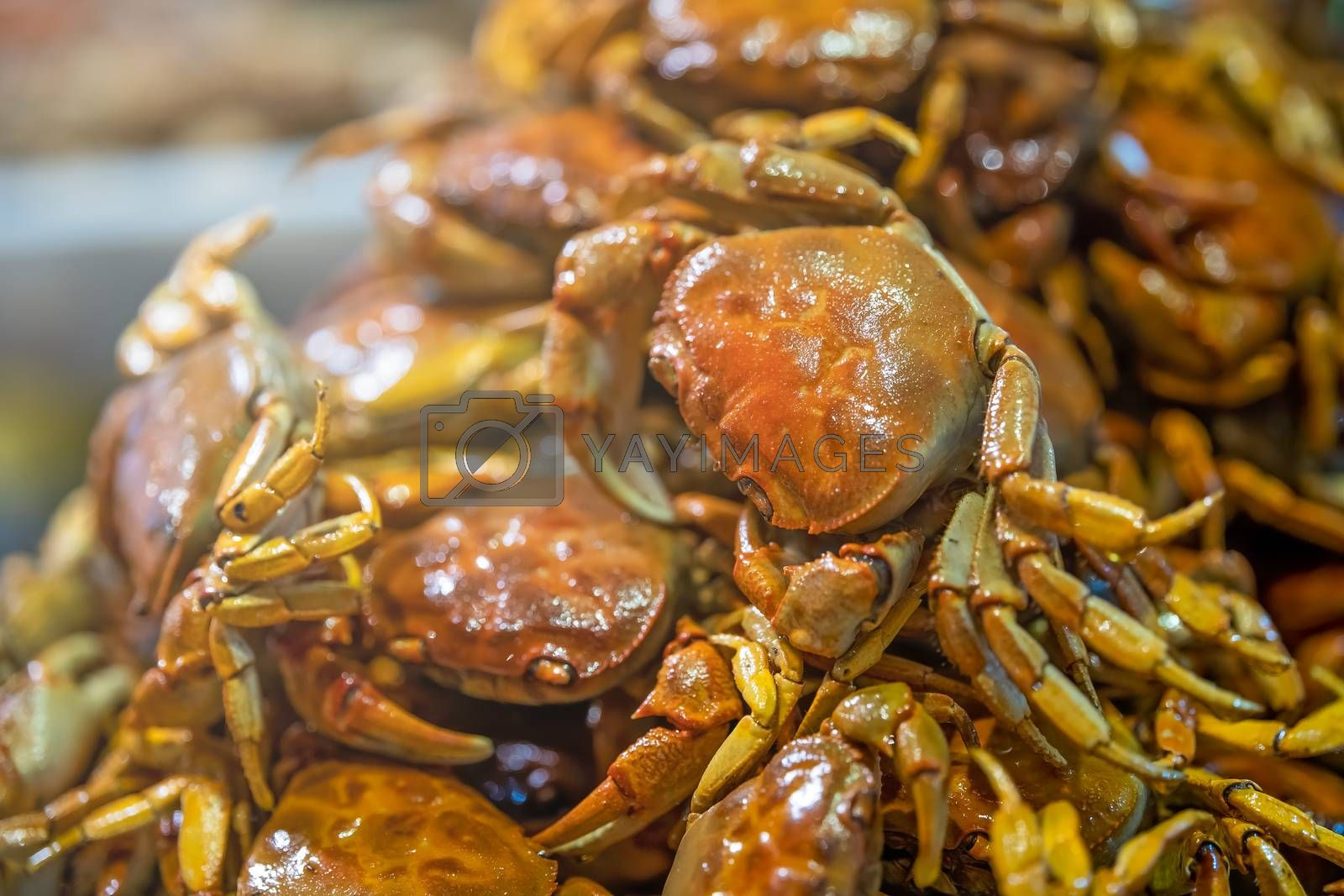 Royalty free image of Selective focus shot of crispy delicious cooked small crabs serv by pawopa3336