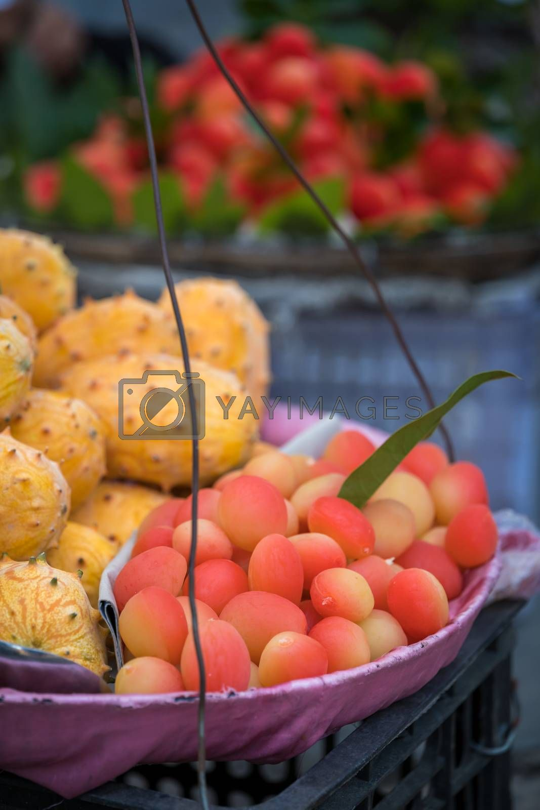 Royalty free image of Colourful tropical fruits in a carry basket by pawopa3336