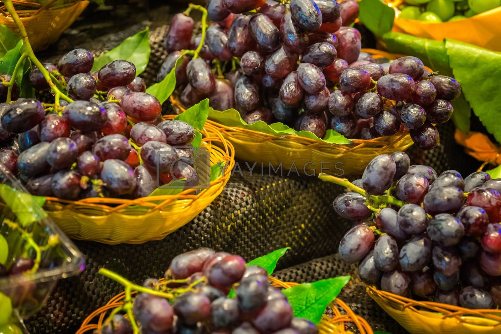 Royalty free image of Delicious dark red grapes on sale on market by pawopa3336