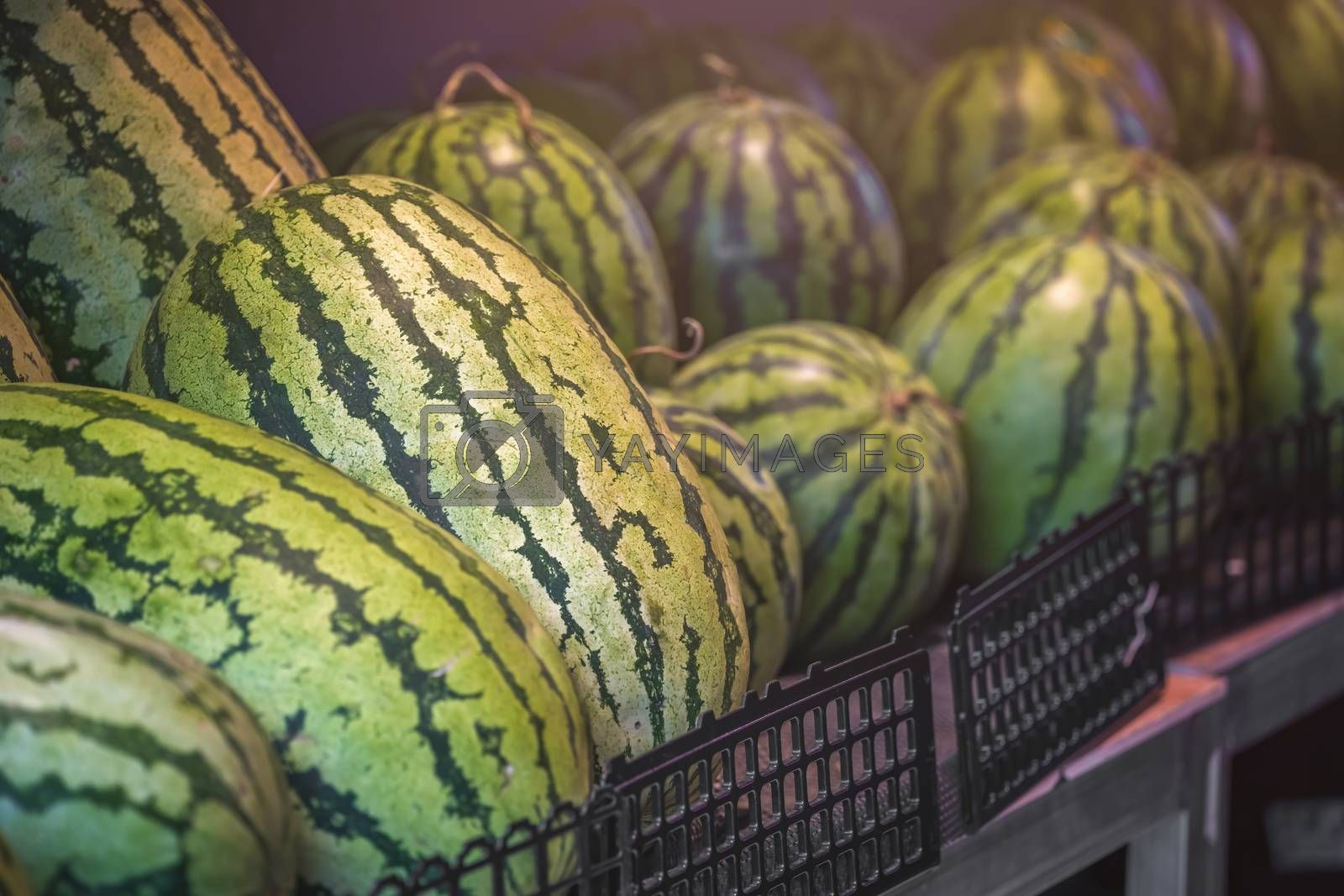 Huge watermelons for sale in a fruit and vegetable shop on the street in Zigong, China