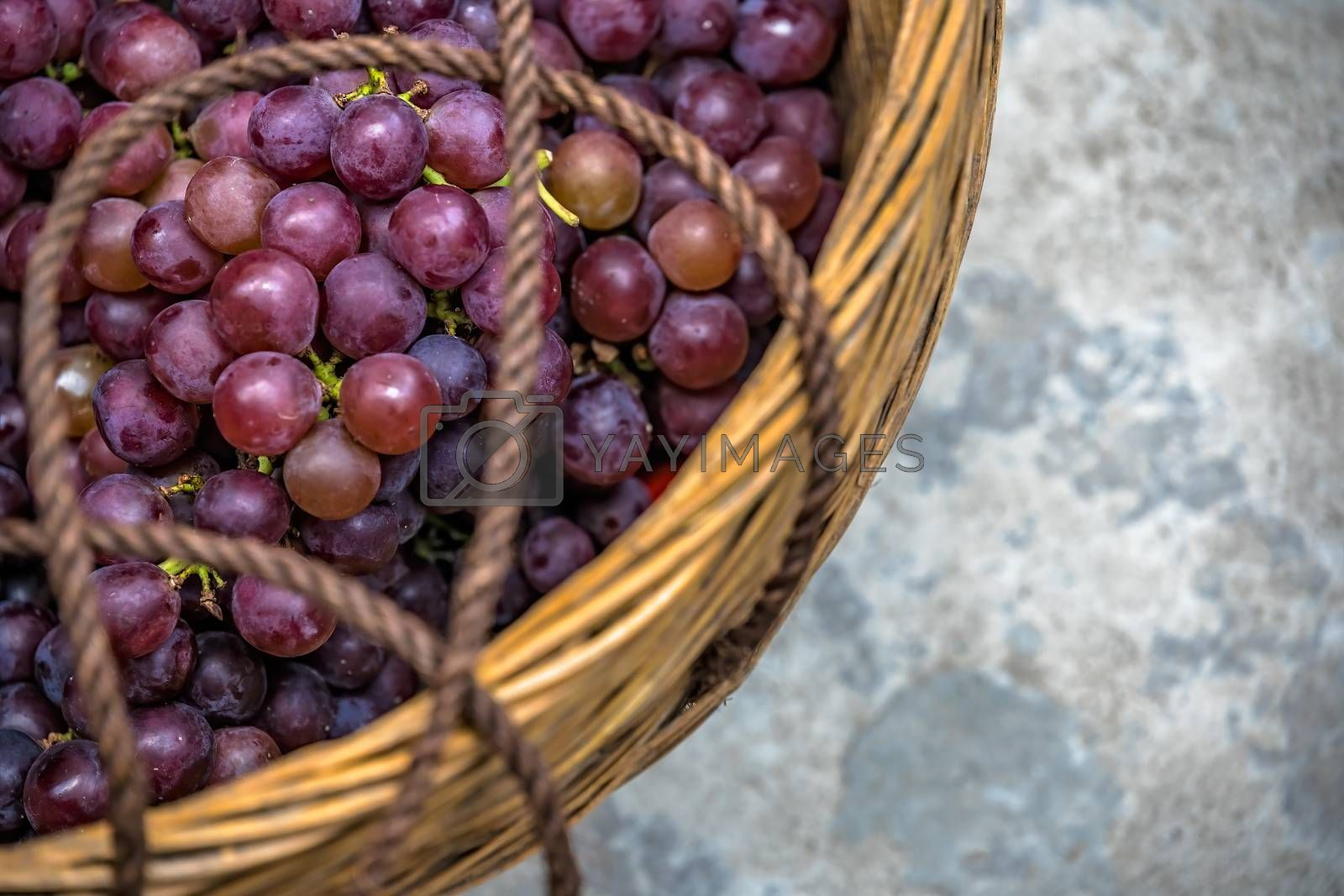Shot of fresh grapes in a basket on the ground