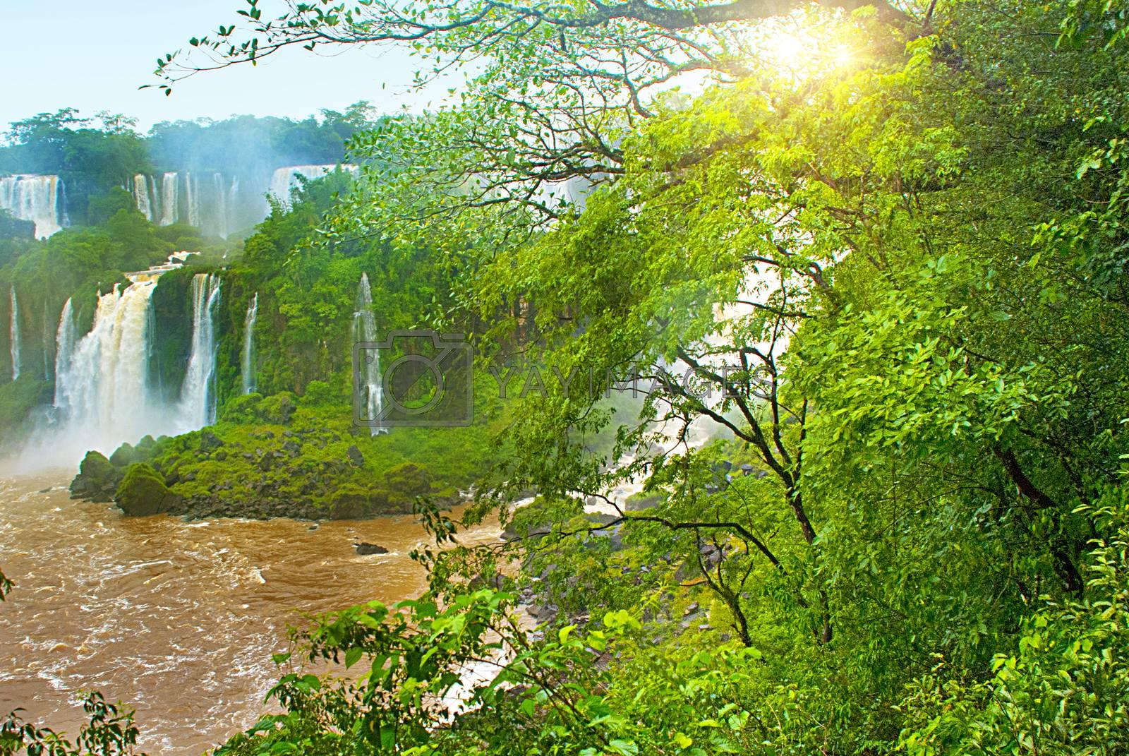 ARGENTINA, IGUAZU: Beatiful view point of Iguazu falls, one of the world's great natural wonders. Peurto Iguazu, Argentina. UNESCO World Heritage site.