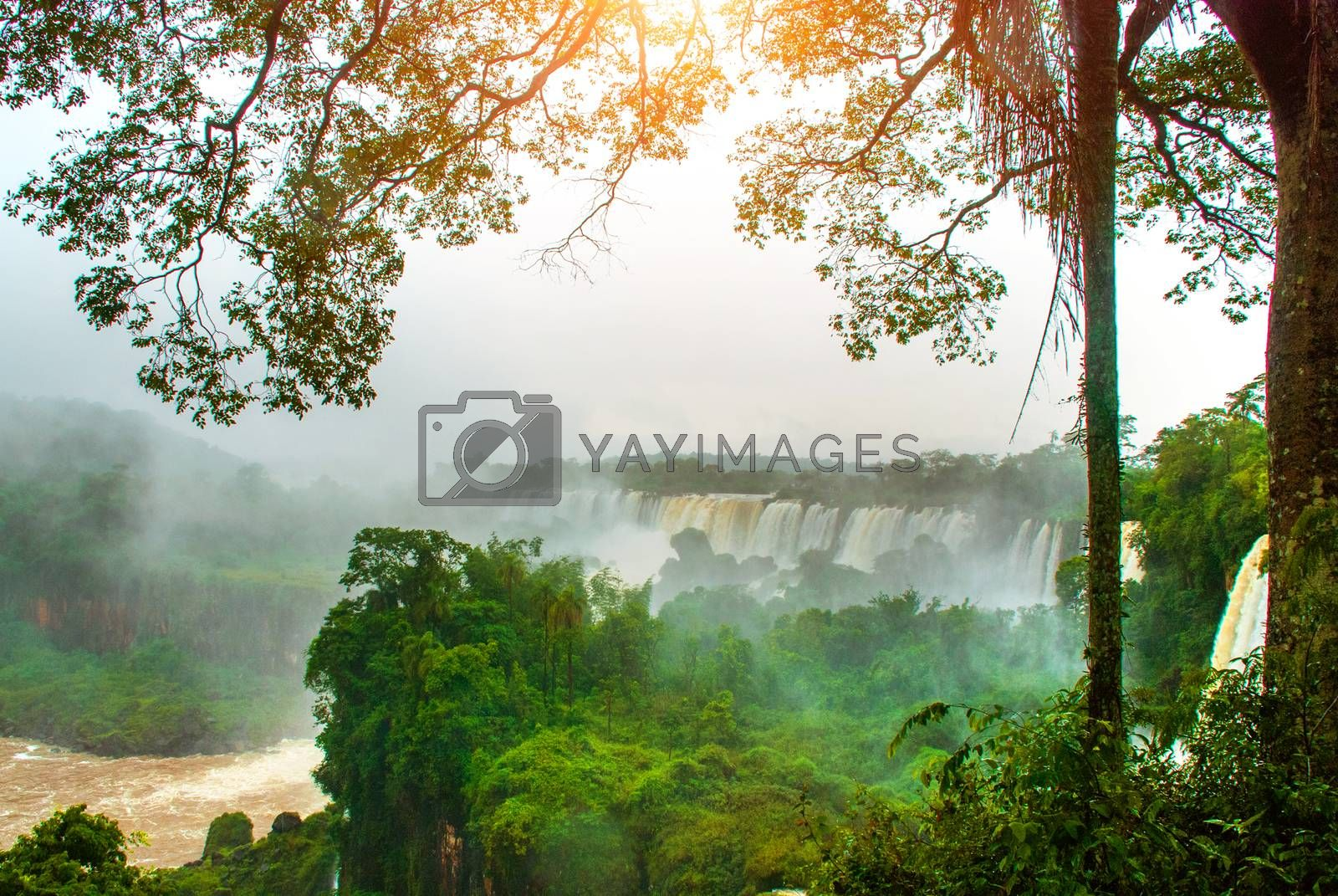 Argentina, America, Waterfalls, Iguazu Falls: Beautiful landscape overlooking the world famous waterfall, the seventh wonder of the world. UNESCO World Heritage site.