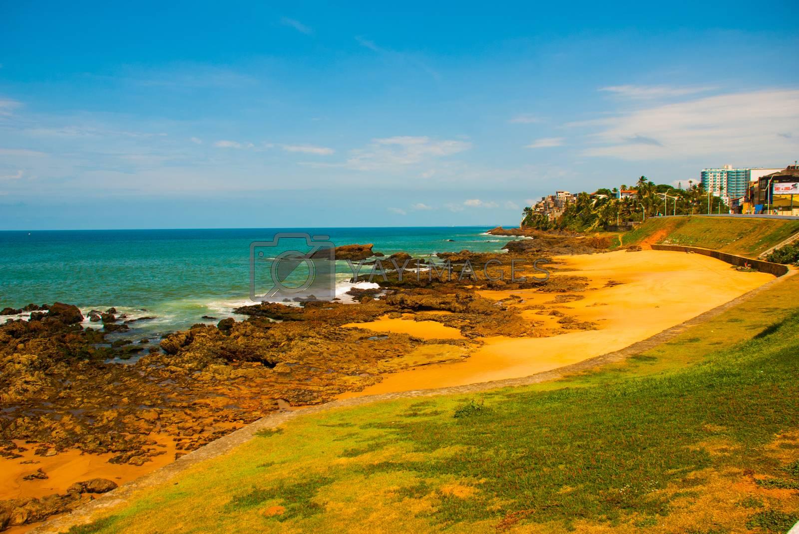 Brazilian beach with yellow sand and blue sea in Sunny weather. Brazil. Sao Salvador da Bahia de Todos os Santos. South America.