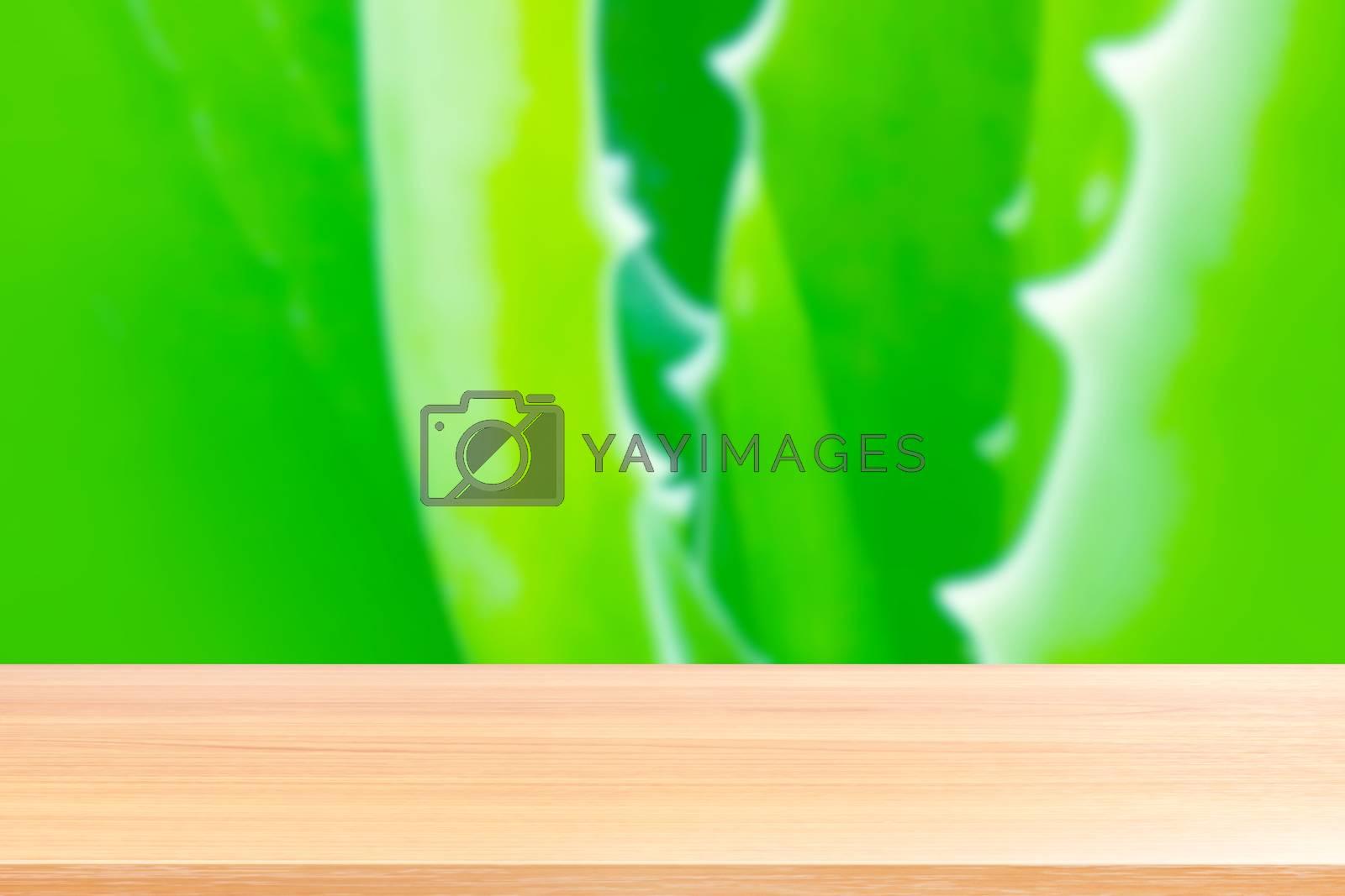 wood plank on aloe vera leaf blurred green fresh nature background, empty wood table floors on aloe vera blurred green fresh nature background, wood table board empty front aloe vera leaf fresh