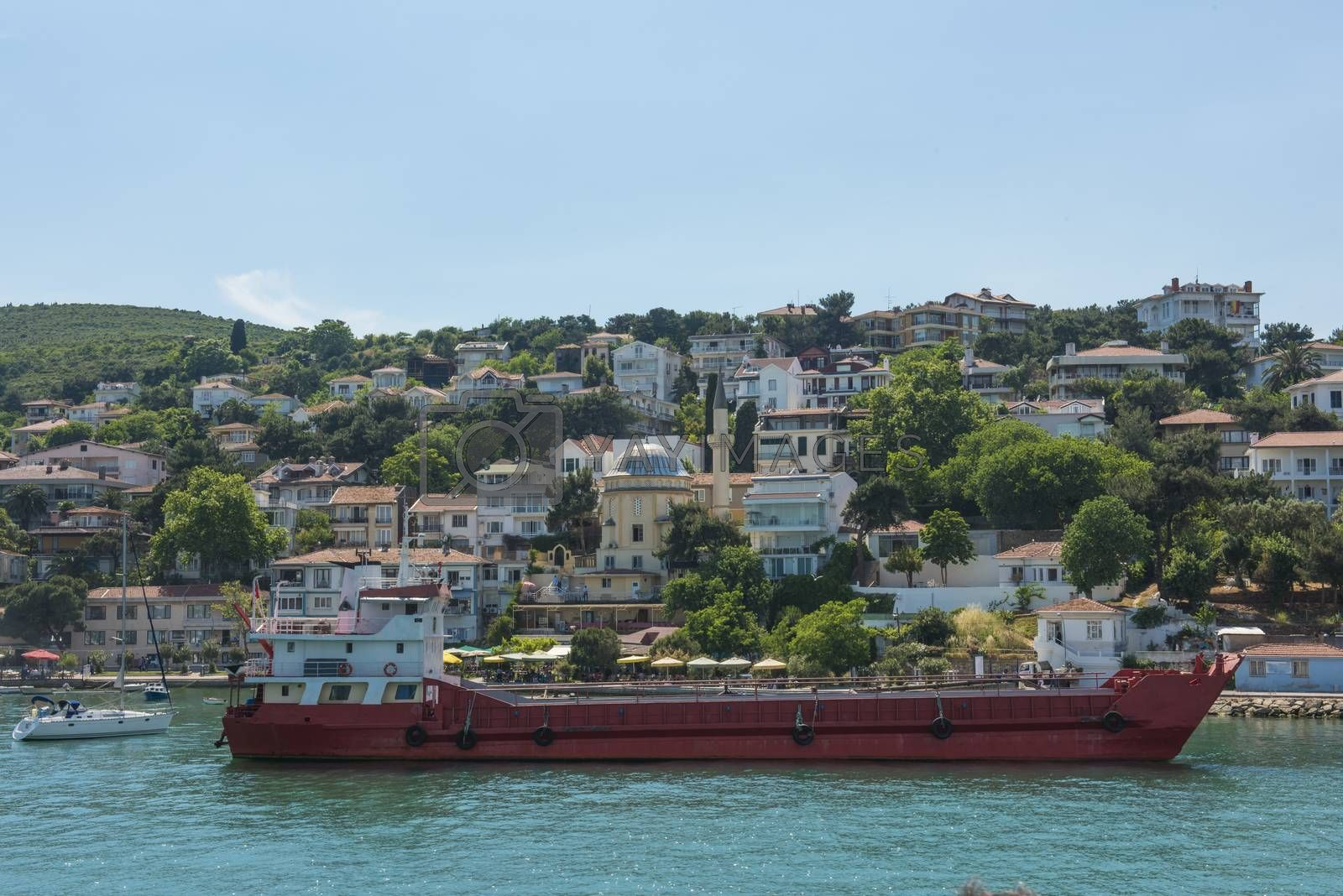 View of rural Princes Island of Kinaliada hillside with luxury residential housing and cargo ship on coast