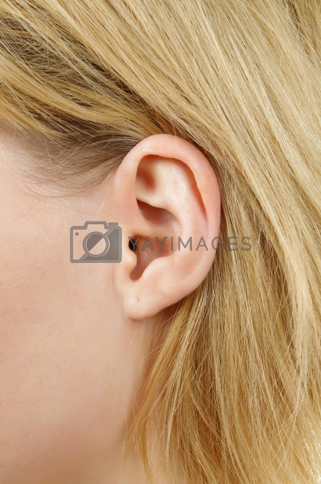 blonde female ear closeup